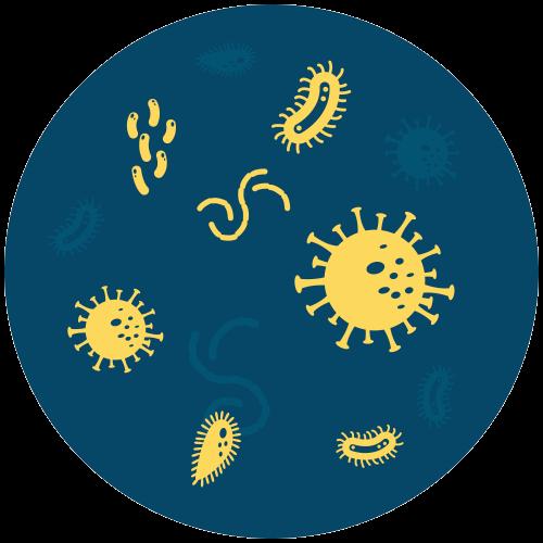 Elimina 99,9% dos vírus, bactérias e fungos